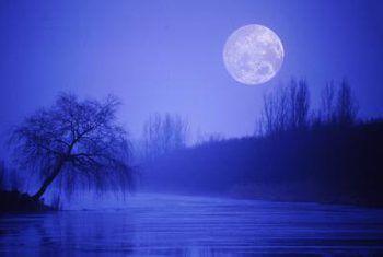 Hoe om bome te snoei deur die fase van die maan