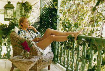 Tropiese balkon plante