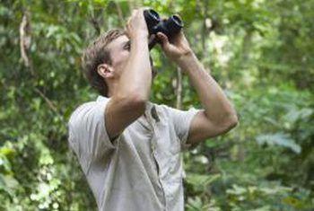 Wat is die doelstellings van ekotoerisme?